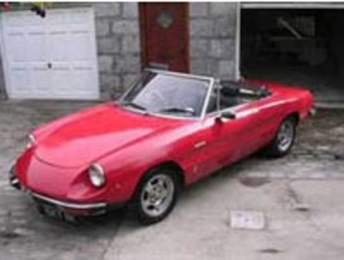 Alfa Spider For Hire (picture 1 of 3)