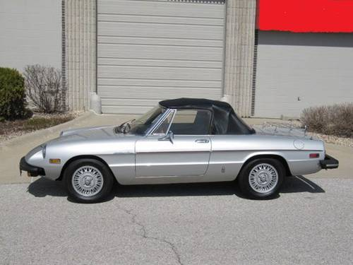 1981 Alfa Romeo Spider Veloce Roadster For Sale (picture 2 of 6)