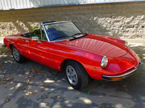 1982 ALFA ROMEO SPIDER VELOCE 2000  For Sale (picture 1 of 6)