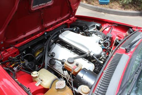 1982 Alfa Romeo Autodelta Group A GTV6 2500 For Sale (picture 6 of 6)