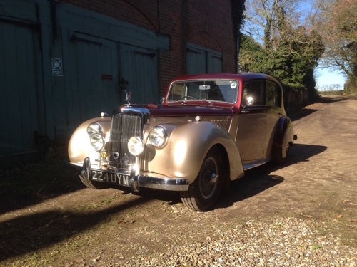 1954 Alvis TC21/100 Greylady Saloon For Sale (picture 1 of 6)