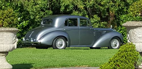 1955 Beautiful Grey Lady for sale For Sale (picture 1 of 5)