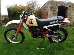 1983 YAMAHA TT600K ENDURO