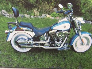 2001 Harley Davidson For Sale