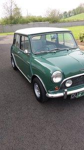 1964 MK1 Mini Cooper
