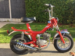 1976 Peripoli Oxford 50 Italian Sports moped morini For Sale