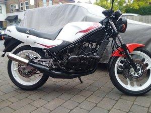 1986 Yamaha RZ250R For Sale