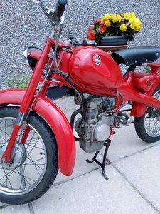 1962 MOTOM 48C