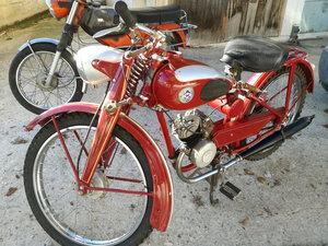 1955  SACHS HERCULES 98CC
