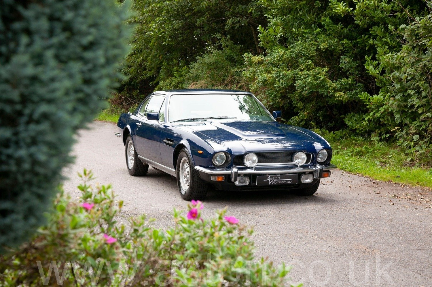1981 Aston Martin V8 Series IV Oscar India SOLD (picture 1 of 6)