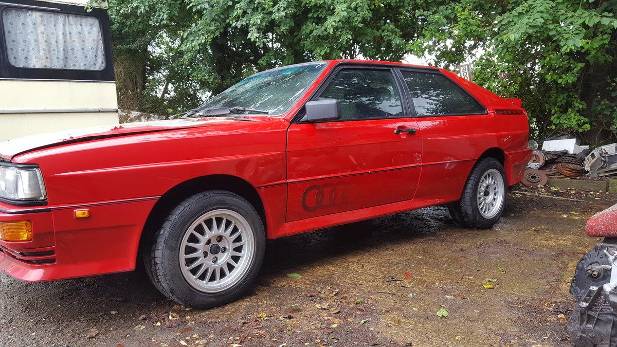 1986 Audi quattro ur . WR For Sale (picture 1 of 6)