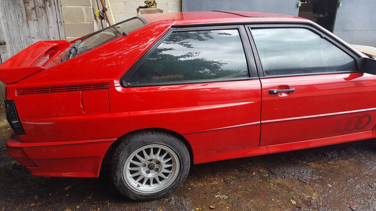 1986 Audi quattro ur . WR For Sale (picture 3 of 6)