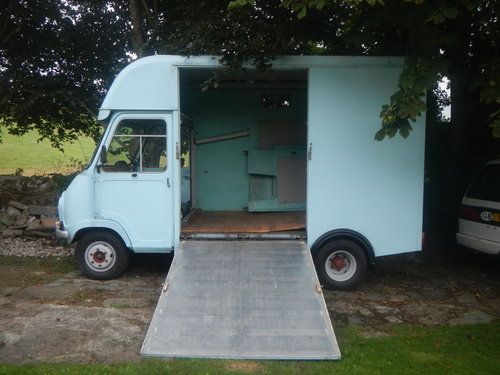 1972 Austin Morris EA 350 Horsebox SOLD (picture 1 of 5)