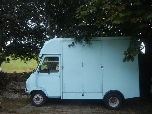 1972 Austin Morris EA 350 Horsebox SOLD (picture 2 of 5)