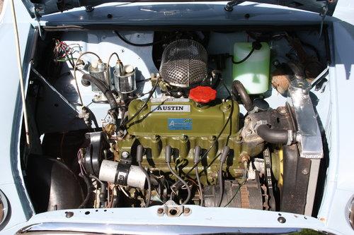 1981 Austin Mini - convertible For Sale (picture 4 of 6)