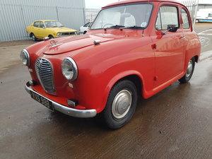 1951 Austin A30 For Sale