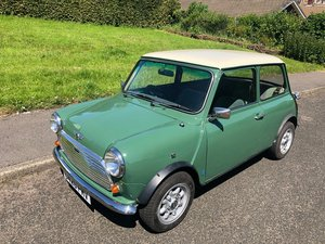 1989 Mini 1000 - Fully Restored - Ready to go! For Sale