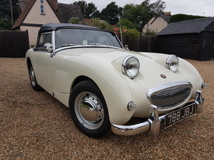 1961 Austin Healey Frogeye Sprite For Sale