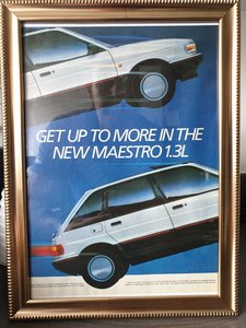 1987 Original  Austin Maestro Framed Advert