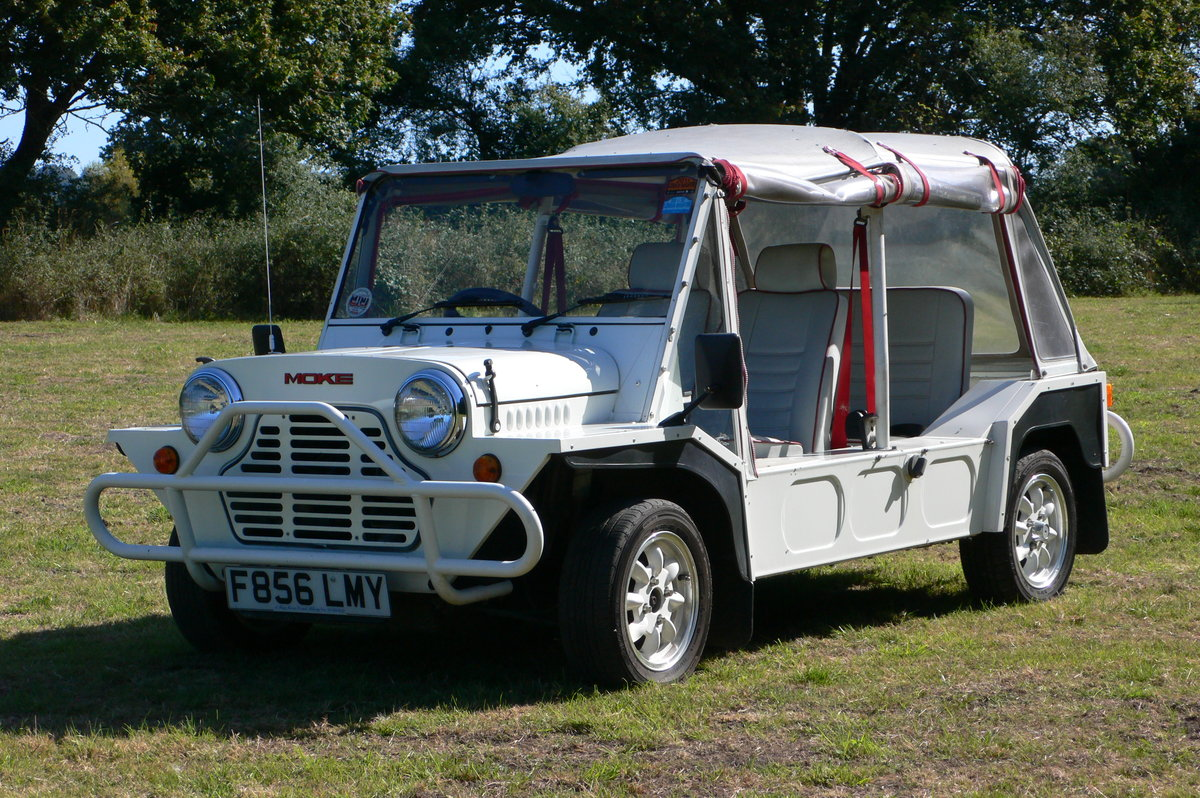 1989 Austin Mini Moke For Sale by Auction (picture 1 of 6)
