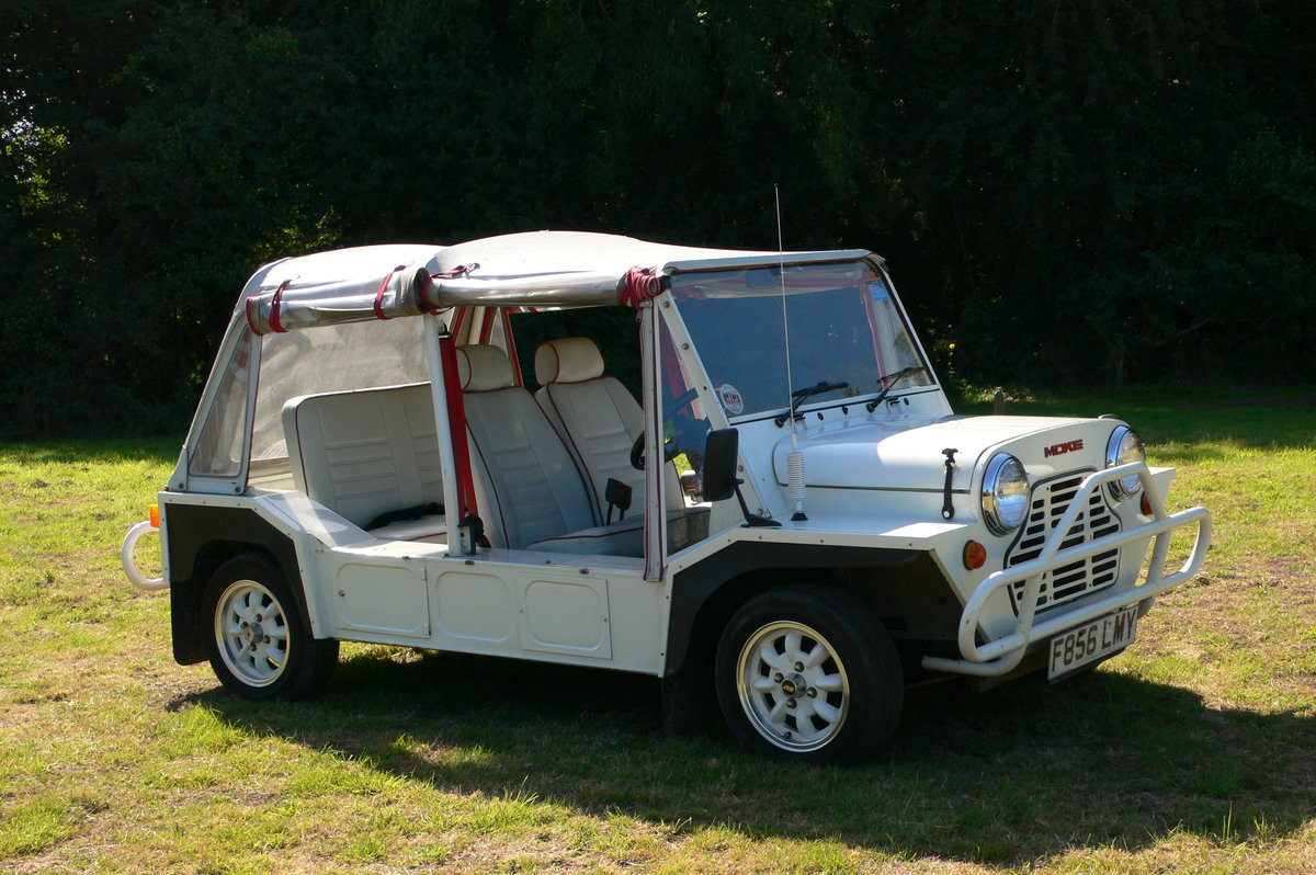 1989 Austin Mini Moke For Sale by Auction (picture 3 of 6)