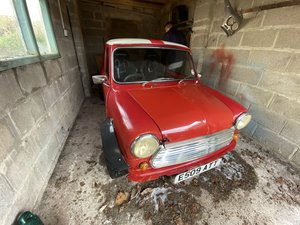 1988 Beautiful Austin mini For Sale