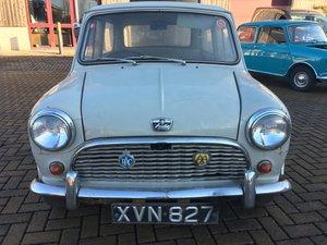Austin Mini 7 1960 Build