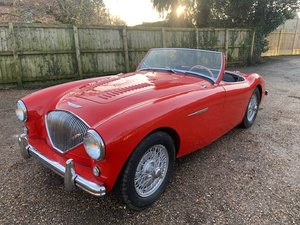 1954 Austin Healey SOLD by Auction