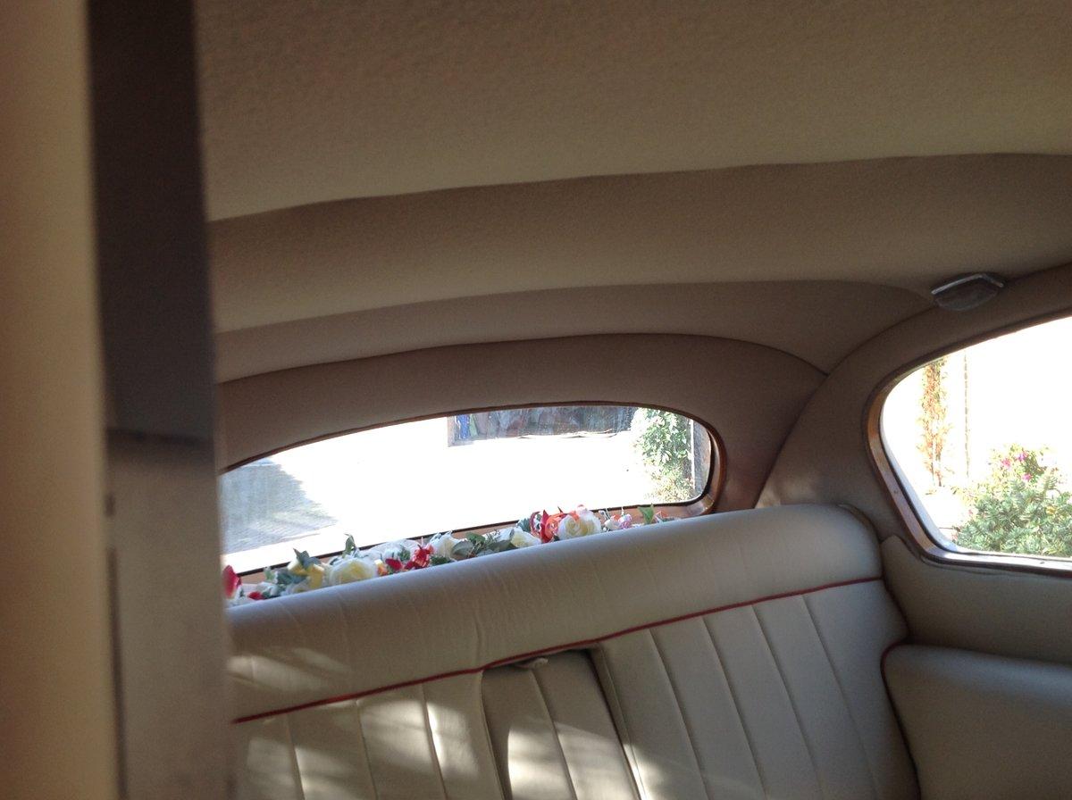 1966 Vanden plas princess limousine For Sale (picture 4 of 6)