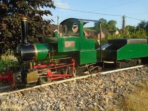 2020 sweet pea steam ride on train