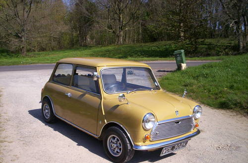1972 classic mini harvest gold For Sale (picture 1 of 6)