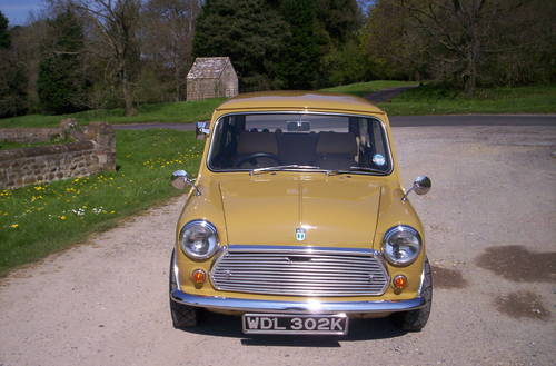 1972 classic mini harvest gold For Sale (picture 2 of 6)