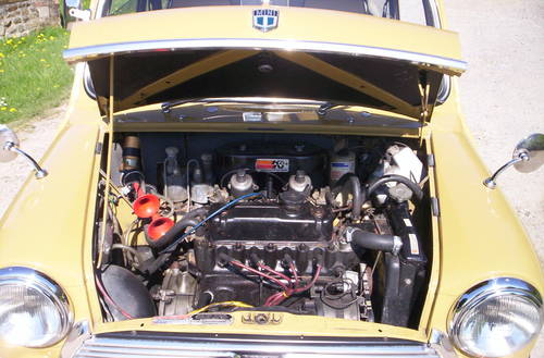 1972 classic mini harvest gold For Sale (picture 6 of 6)