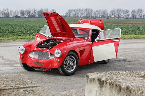 Austin Healey MKII 1962 FIA RACE For Sale (picture 4 of 6)