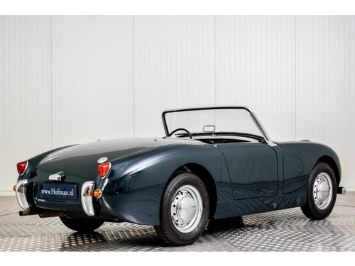 1961 Austin Healey Sprite MK1 Bugeye Frogeye For Sale (picture 2 of 6)