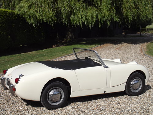 1959 Austin Healey 'Frogeye' Sprite SOLD (picture 3 of 6)