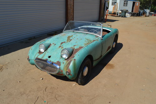 1959 Austin Healey Frogeye SOLD (picture 1 of 1)
