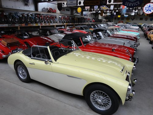 1960 perfectly restored Austin Healey MK1 For Sale (picture 1 of 6)