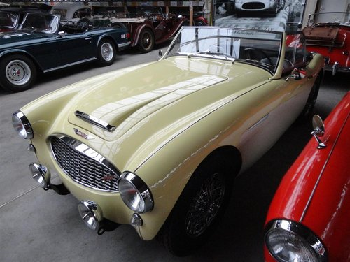 1960 perfectly restored Austin Healey MK1 For Sale (picture 6 of 6)