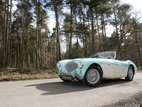 Austin Healey 100/4 - 1956 BN2 Factory Le Mans 100M For Sale (picture 6 of 6)