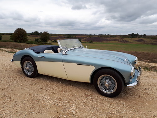 1957 Austin Healey 100-6 with matching numbers For Sale (picture 1 of 6)