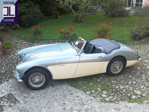 BEAUTIFUL 1961 AUSTIN HEALEY 3000 MK1 RHD For Sale (picture 2 of 6)