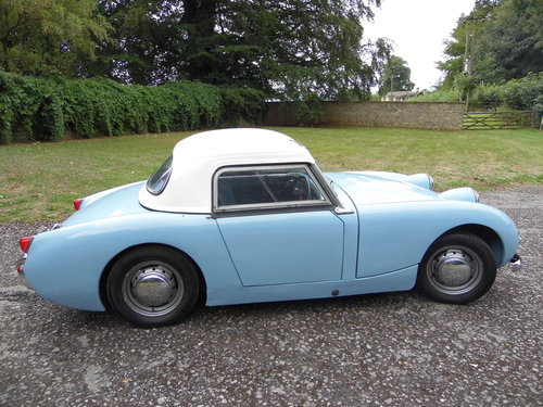 1960 Austin Healey Frogeye Sprite For Sale (picture 3 of 6)