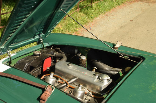 1954 Austin Healey 100/4 M spec  For Sale (picture 5 of 6)