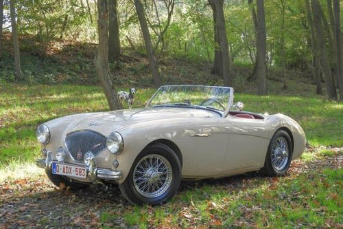Austin Healey 100/4 BN1 LHD - 1954 For Sale (picture 1 of 6)