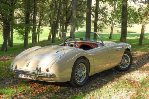 Austin Healey 100/4 BN1 LHD - 1954 For Sale (picture 2 of 6)