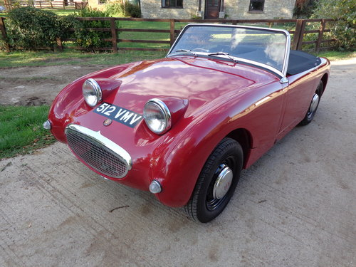 1959 A FULLY RESTORED FROGEYE SPRITE WITH SENSIBLE UPGRADES! For Sale (picture 1 of 5)