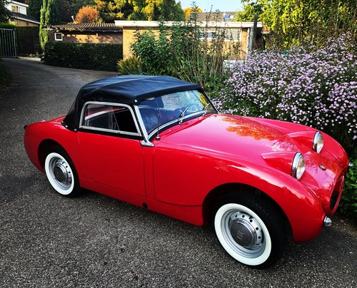 1959 Austin Healey Sprite frog eye For Sale (picture 5 of 6)