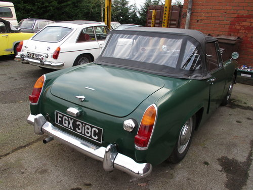 1965 Green Austin Healey Sprite Project For Sale (picture 3 of 3)