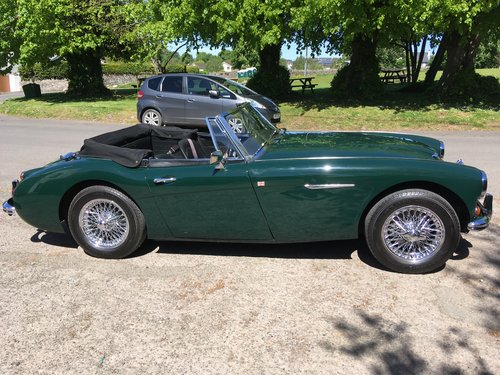 1966 Award winning Austin Healey 3000 MK111 For Sale (picture 6 of 6)